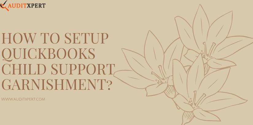 QuickBooks Child Support Garnishment?